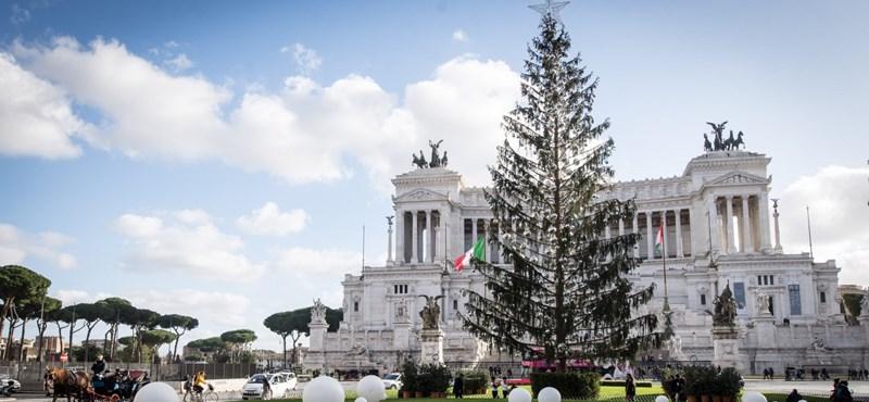 Mégsem múzeumba viszik a vécékefének csúfolt római karácsonyfát