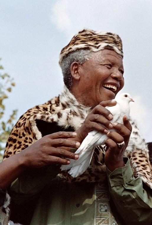 Nelson Mandela - 1994. márc. 21. - Mandela az Afriaki Nemzeti Kongresszus elnöke egy fehér galmabot enged fel leopárdbőr-népviseletében -