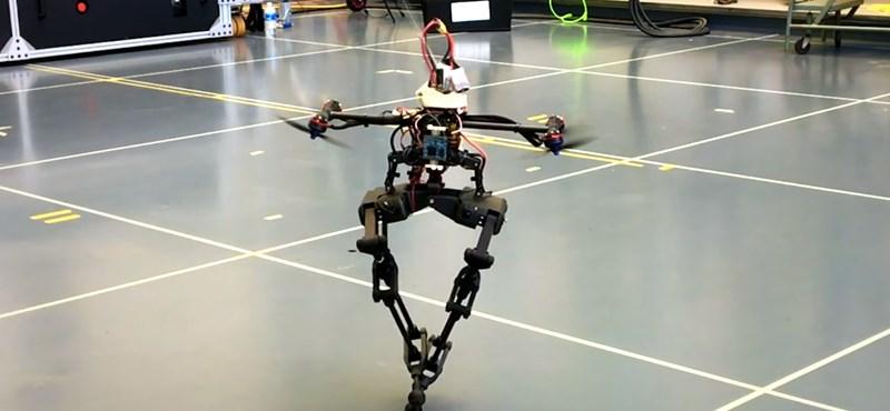 Imbolyogva sétál az új kétlábú robot, de úgy forog, mint egy balett-táncos – videó