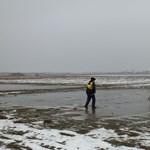 Fotók: jégen rekedt őzet mentettek a rendőrök egy rögtönzött ródlival
