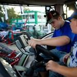 Traktor- és állatsimogató Budapesten – Nagyítás-fotógaléria