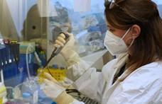 Bár kicsi az esély rá, de a fagyasztott élelmiszerek csomagolásán is megél és fertőzhet a koronavírus