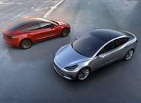 """Kutya módot"" ígér a Teslákba Elon Musk"