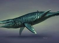 160 000 000 éves tengeri ragadozó maradványait tárták fel Chilében
