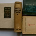 Zsidózás és könyvbezúzás: a magyar irodalomtörténet egyik szégyenteljes fejezete