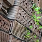 Egyetlen fotó illusztrálja, hogy mit jelent az igazi építőanyag-hiány