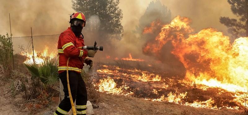 Halálos erdőtüzeket idézett elő a szokatlan októberi kánikula