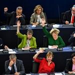 Orbán migránsellenessége a demokrácia leépítését fedi el – véli a politikafilozófus