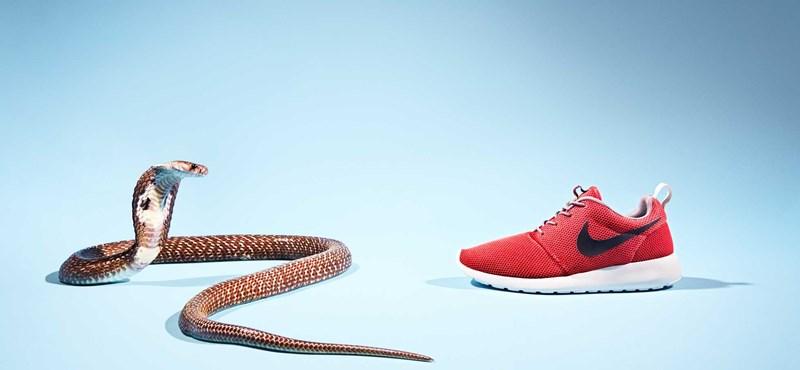 Ilyesmi húsz éve nem történt a Nike-val
