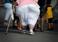A túlsúlyosaknak elsőbbséget kellene adni a védőoltáskor egy jelentés szerint