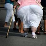 A túlsúlyos emberek tényleg hátrányban vannak a munkaerőpiacon