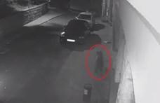 Négy medve erőszakkal tört be egy erdélyi hotelbe – videó
