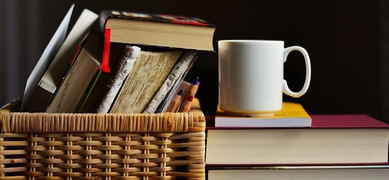 Kétperces irodalmi teszt: felismeritek ezeket a regényeket egy-egy szereplő nevéről?