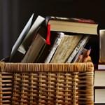 Profik vagytok irodalomból? Itt van a 2020-as év irodalomteszt - válogatása