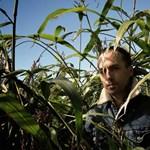 Ingyen és egészében meghallgatható az ambient-mester Tim Hecker új albuma