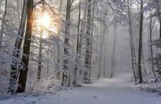 Adventi mesenaptár – december 11.