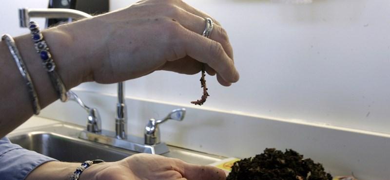 Kihagyott ziccerek II.: Amikor biogilisztázott a fél ország