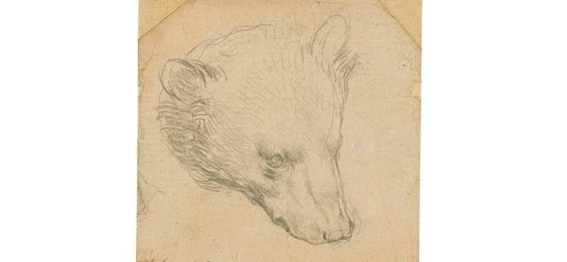 Több milliárd forintért kelhet el egy Leonardo da Vinci-rajz