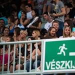 Gyurcsány tervez, Orbán végez