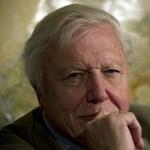 David Attenborough visszatér, hamarosan jön A kék bolygó 2. évadja