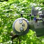 Munkába állt az első robotlajhár, a veszélyes és a veszélyben lévő állatokat is figyeli