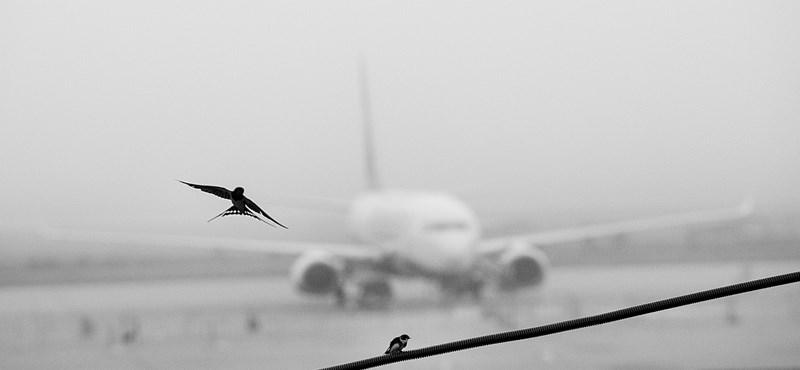 Újra működik a ferihegyi repülőtér