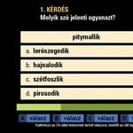 A legjobb ingyenes, online IQ-tesztek: derítsd ki, hány pontot érnél el
