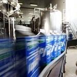 Bedőlt az egyik legnagyobb magyar tejes cég