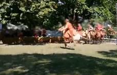 Elítélték a lovasíjászt, aki hasba lőtt egy nézőt egy bemutatón