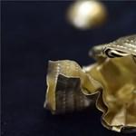 Gombászás közben találtak egy különleges aranytárgyat Szegednél – fotó