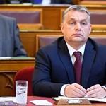 Kovács Tamás olimpikon is keményen beolvasott Orbánnak