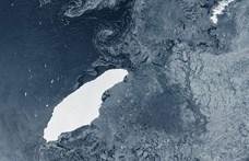 Szörnyű véget érhet a legnagyobb jéghegyének útja