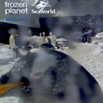 Fantasztikus látvány: beülhet be a világ legkedvesebb pingvinjei közé