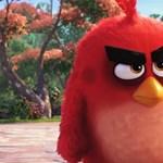 Jön az Angry Birds-film, itt az első előzetes
