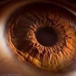 Bámulatos fotók a szemünkről macro közelségben