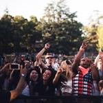 Elmaradnak a fesztiválok, de a diákmunka dübörög