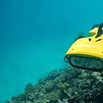 Tengeralattjáró-vadászgépet vetnek be a korallokat megevő tengericsillag ellen