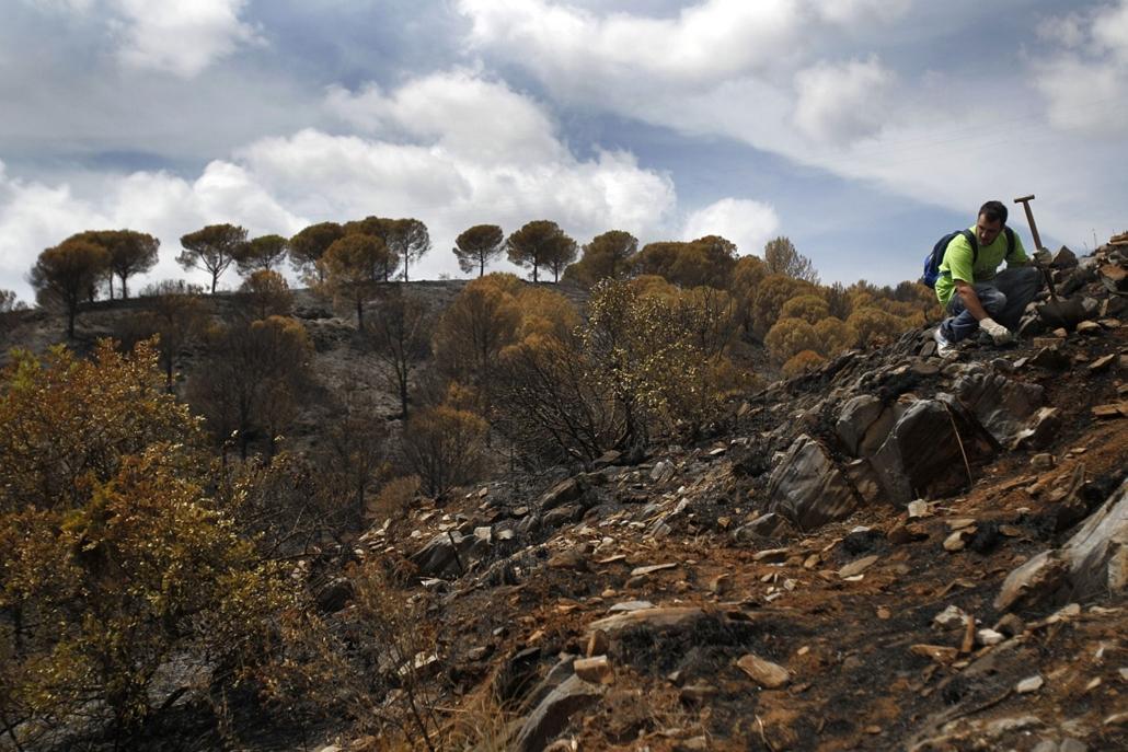Hét képei nagyítás - Futótűz után Marbella környékén Spanyolországban. A hírek szerint több ezer embert evakuáltak, legalább egy ember életét vesztette.