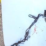 Drótot rakott nyakörv helyett a kutyájára egy dánszentmiklósi férfi