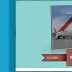 E-könyv a Malév végnapjairól