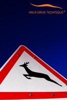 vadveszély