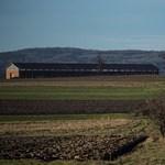 Simicskán kezdi a földosztást az állam