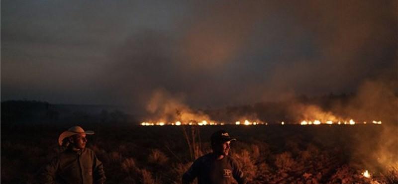 A hadsereg is beszáll az amazóniai erdőtüzek elleni küzdelembe