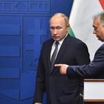 Az én hetem: Lackfi János és Putyin májgaluskalevese
