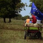 Stagnálást vár jövőre Közép-Európában a bécsi gazdaságkutató