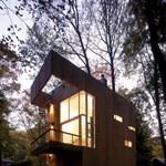Ha kicsi a telek: különleges ház az erdő mélyén