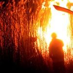 Fotók: Festői látványt nyújtott a lángoló nádas Ősiben