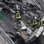 Belegondolt valaha, hogy jutnak el a mentőkutyák a leomlott romokhoz? - videó