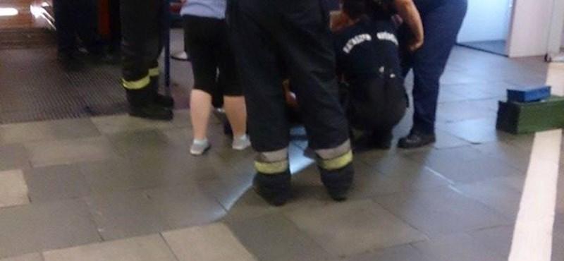 Bedarálta egy kutya lábát a mozgólépcső a Kálvin téren