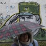 Felszólítással próbálják Mladicsot előcsalogatni